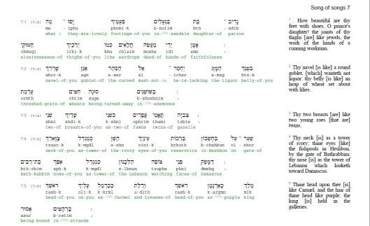 song-of-solomon-7-vv-1-5