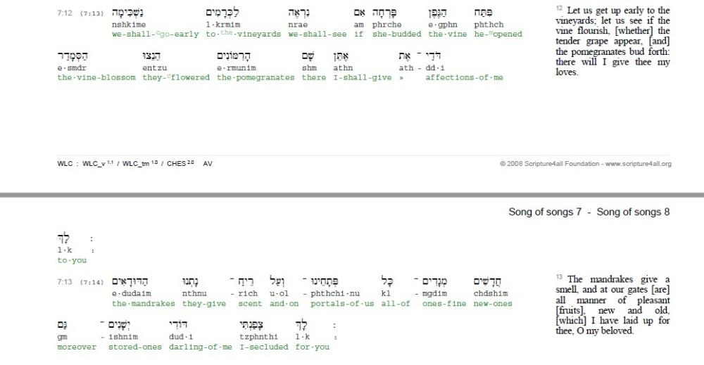 song-of-solomon-7-vv-12-13