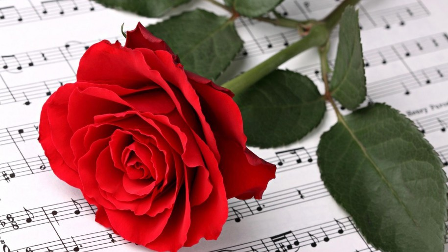 Rose against musical notes.jpg