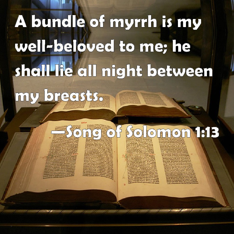 Song 1-13 Biblepic.jpg